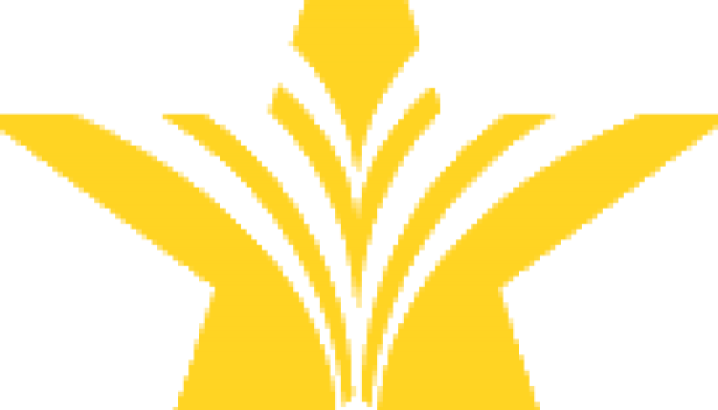 cropped-star-square-logo.png